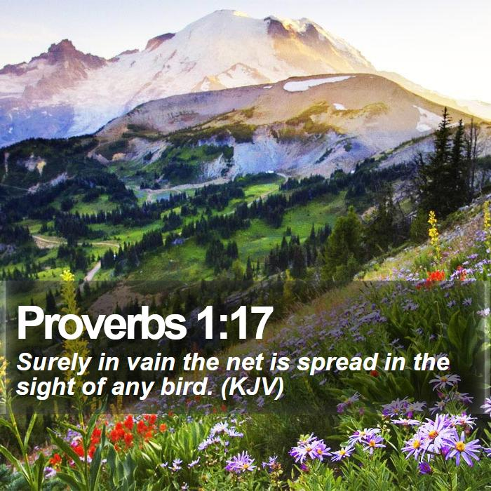 Proverbs 1:17 - Surely in vain the net is spread in the sight of any bird. (KJV)