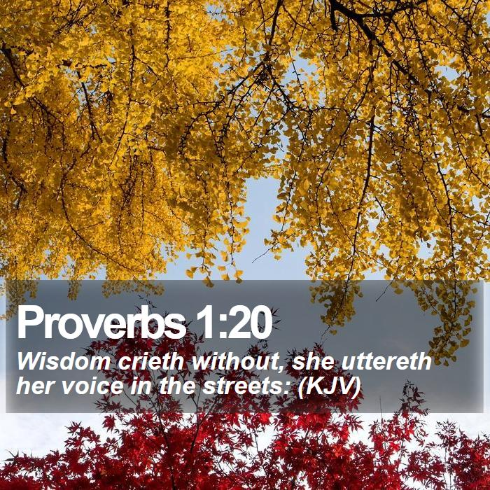 Proverbs 1:20 - Wisdom crieth without, she uttereth her voice in the streets: (KJV)