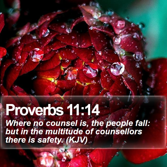 Proverbs 11:14 - Where no counsel is, the people fall: but in the multitude of counsellors there is safety. (KJV)