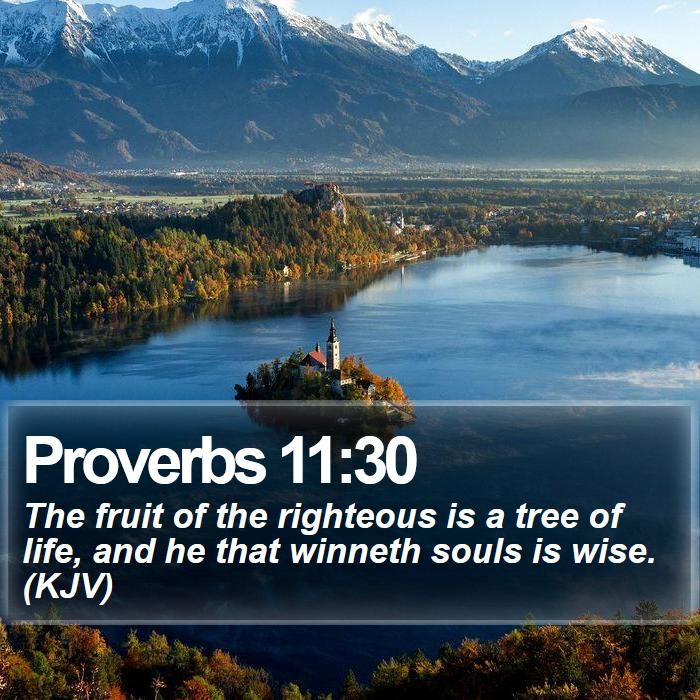 Proverbs 11:30 - The fruit of the righteous is a tree of life, and he that winneth souls is wise. (KJV)