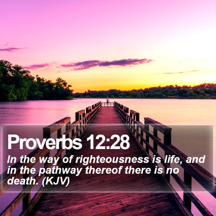 Proverbs 12:28 - In the way of righteousness is life, and in the pathway thereof there is no death. (KJV)