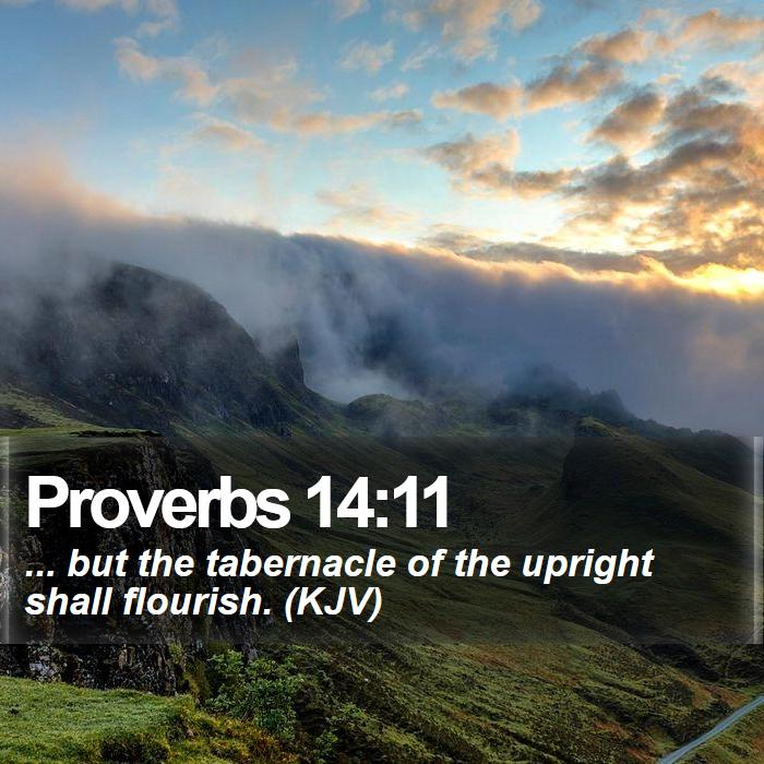 Proverbs 14:11 - ... but the tabernacle of the upright shall flourish. (KJV)