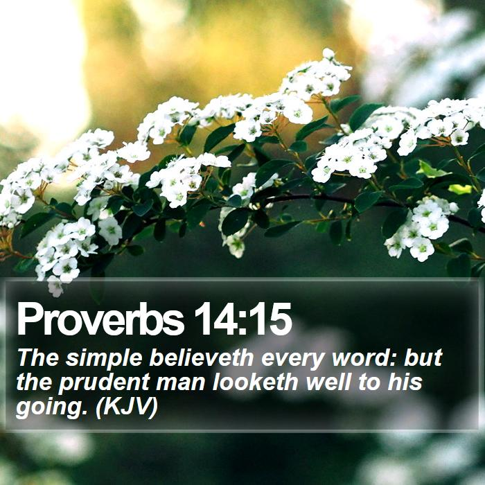 Proverbs 14:15 - The simple believeth every word: but the prudent man looketh well to his going. (KJV)