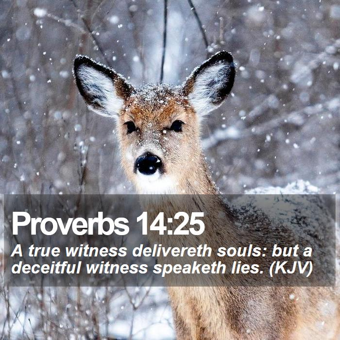 Proverbs 14:25 - A true witness delivereth souls: but a deceitful witness speaketh lies. (KJV)