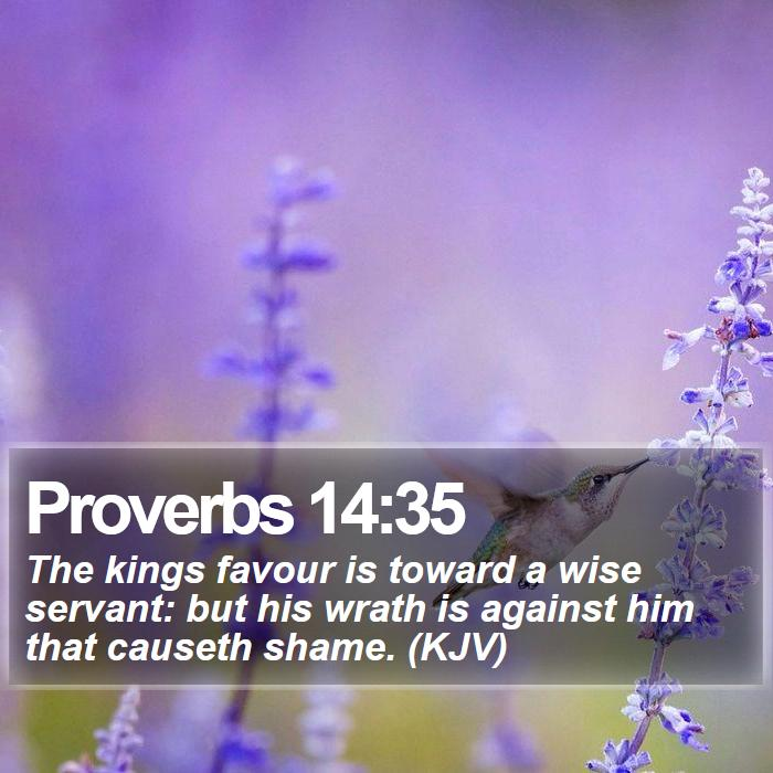 Proverbs 14:35 - The kings favour is toward a wise servant: but his wrath is against him that causeth shame. (KJV)