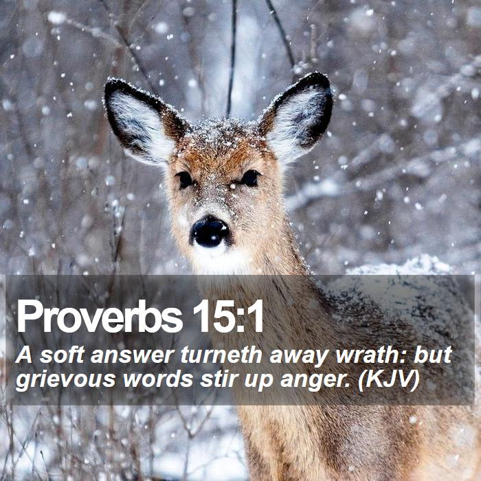 Proverbs 15:1 - A soft answer turneth away wrath: but grievous words stir up anger. (KJV)