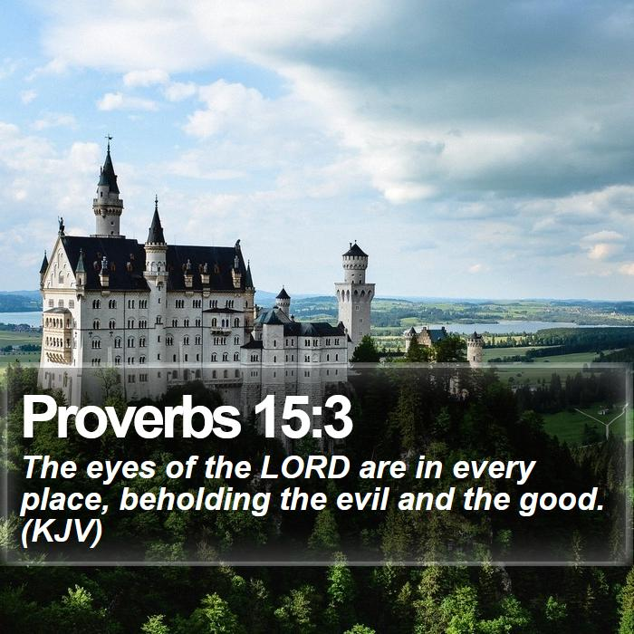 Proverbs 15:3 - The eyes of the LORD are in every place, beholding the evil and the good. (KJV)
