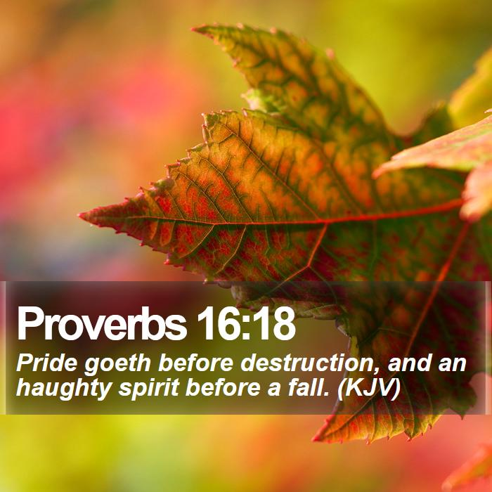 Proverb of the day kjv bible download