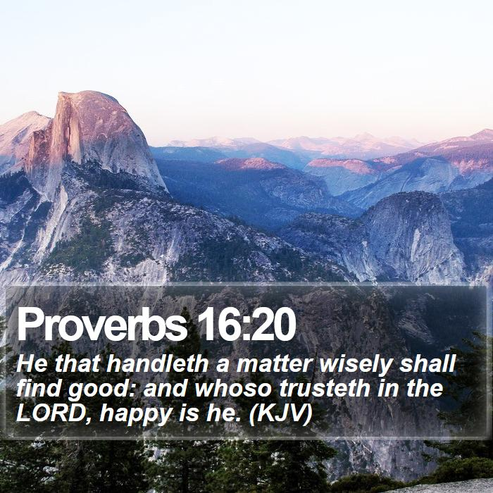 Proverbs 16:20 - He that handleth a matter wisely shall find good: and whoso trusteth in the LORD, happy is he. (KJV)