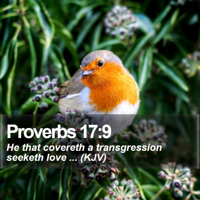 Proverbs 17:9 - He that covereth a transgression seeketh love ... (KJV)