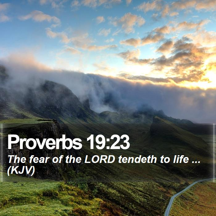 Proverbs 19:23 - The fear of the LORD tendeth to life ... (KJV)