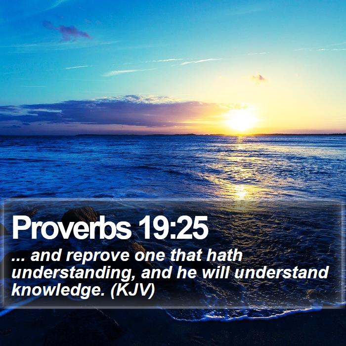 Proverbs 19:25 - ... and reprove one that hath understanding, and he will understand knowledge. (KJV)