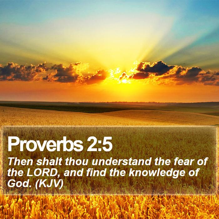 Proverbs 2:5 - Then shalt thou understand the fear of the LORD, and find the knowledge of God. (KJV)