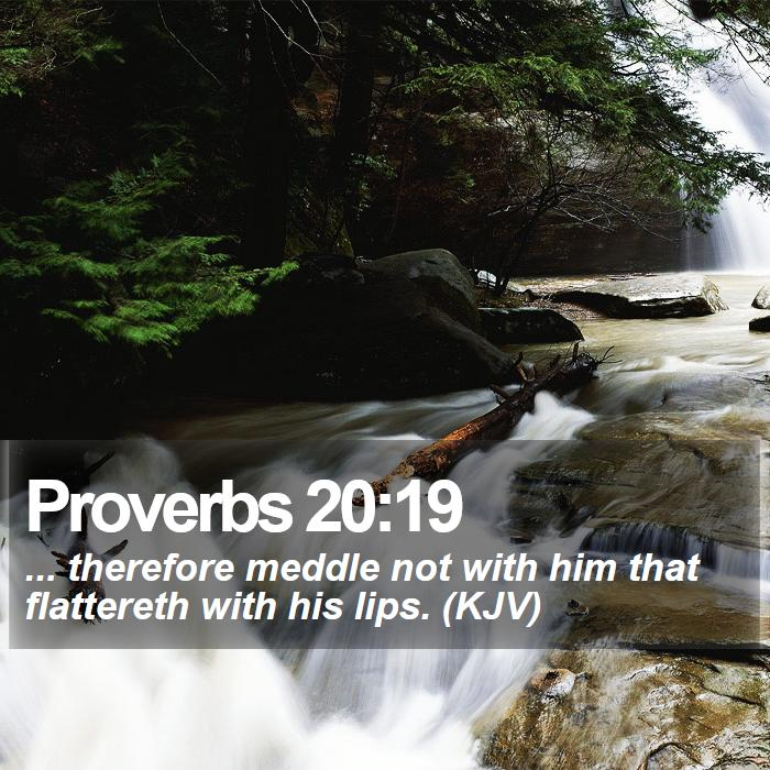 Proverbs 20:19 - ... therefore meddle not with him that flattereth with his lips. (KJV)