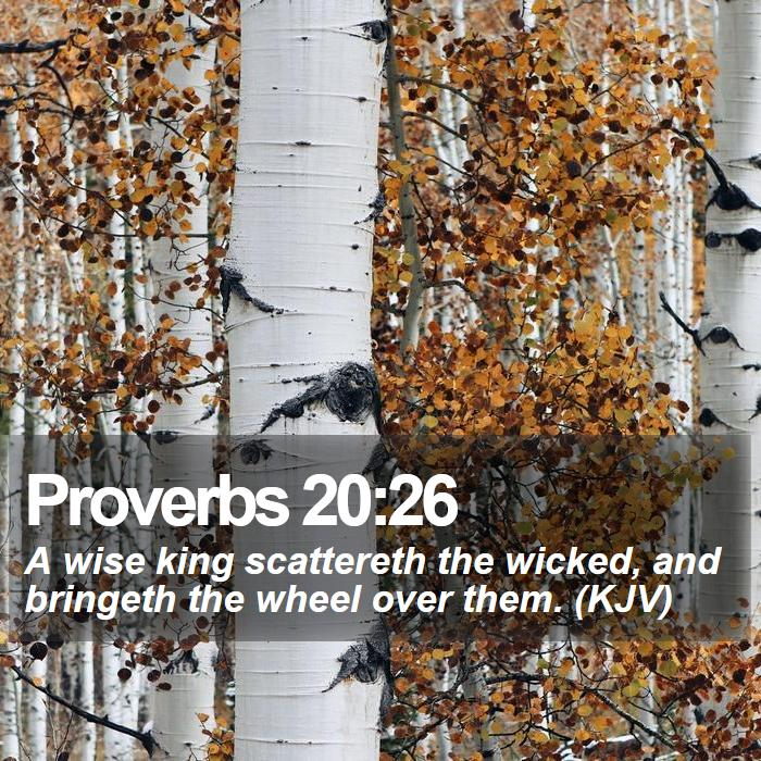 Proverbs 20:26 - A wise king scattereth the wicked, and bringeth the wheel over them. (KJV)