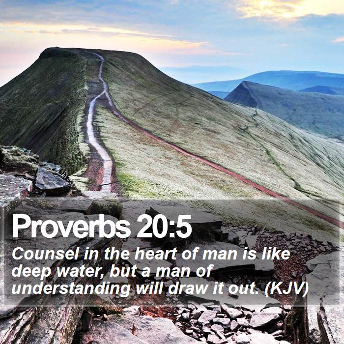 Proverbs 20:5 - Counsel in the heart of man is like deep water, but a man of understanding will draw it out. (KJV)