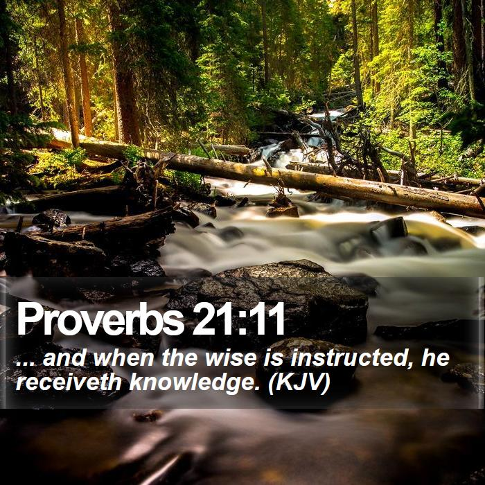 Proverbs 21:11 - ... and when the wise is instructed, he receiveth knowledge. (KJV)