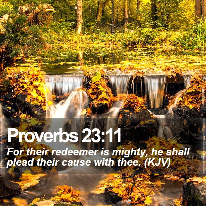 Proverbs 23:11 - For their redeemer is mighty, he shall plead their cause with thee. (KJV)