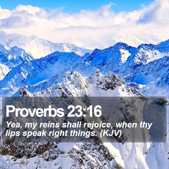 Proverbs 23:16 - Yea, my reins shall rejoice, when thy lips speak right things. (KJV)