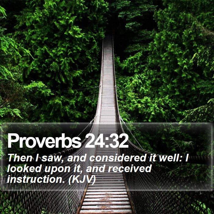 Proverbs 24:32 - Then I saw, and considered it well: I looked upon it, and received instruction. (KJV)