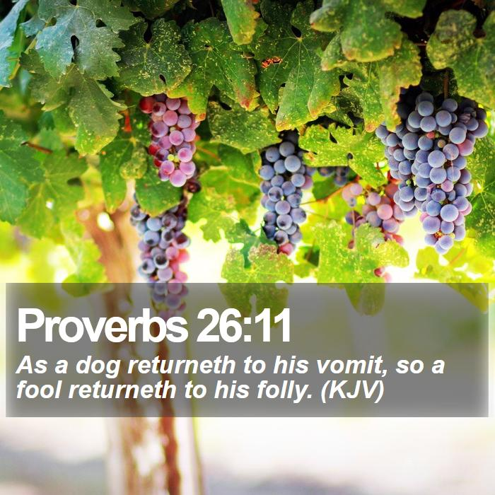 Proverbs 26:11 - As a dog returneth to his vomit, so a fool returneth to his folly. (KJV)