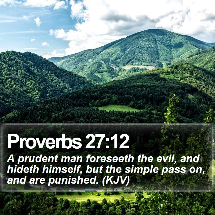 Proverbs 27:12 - A prudent man foreseeth the evil, and hideth himself, but the simple pass on, and are punished. (KJV)