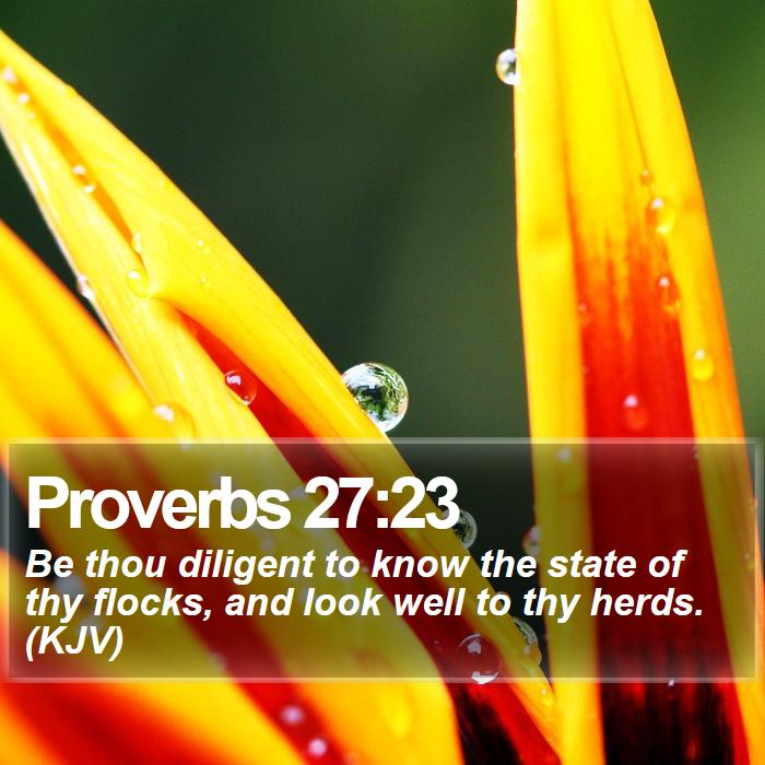 Proverbs 27:23 - Be thou diligent to know the state of thy flocks, and look well to thy herds. (KJV)