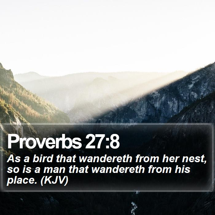 Proverbs 27:8 - As a bird that wandereth from her nest, so is a man that wandereth from his place. (KJV)