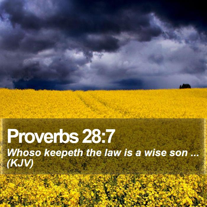 Proverbs 28:7 - Whoso keepeth the law is a wise son ... (KJV)