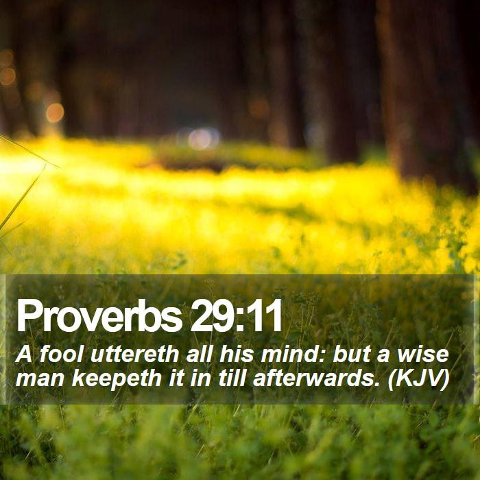 Proverbs 29:11 - A fool uttereth all his mind: but a wise man keepeth it in till afterwards. (KJV)