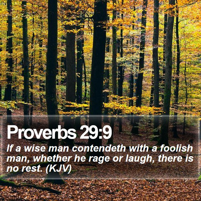 Proverbs 29:9 - If a wise man contendeth with a foolish man, whether he rage or laugh, there is no rest. (KJV)