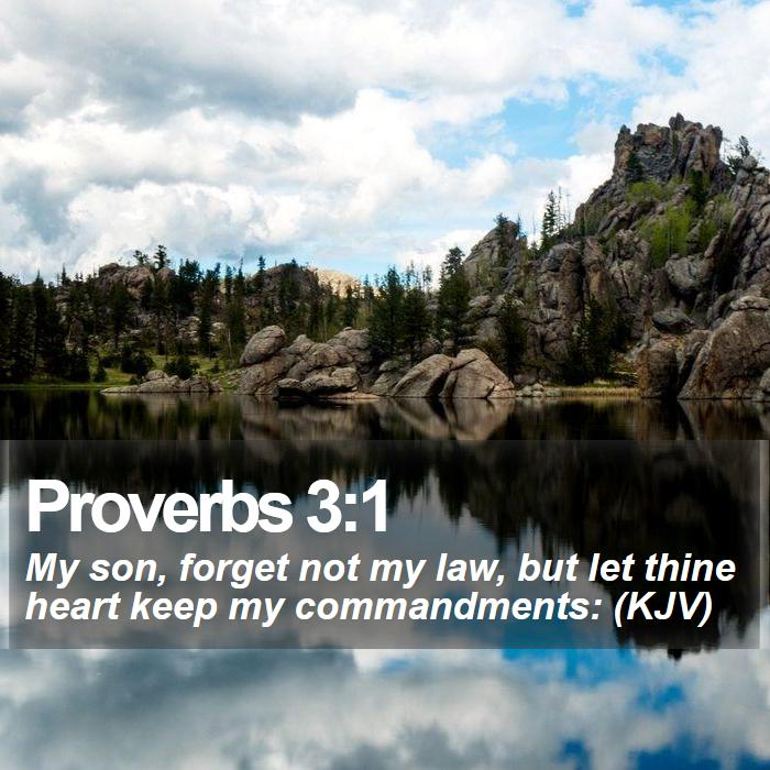 Proverbs 3:1 - My son, forget not my law, but let thine heart keep my commandments: (KJV)