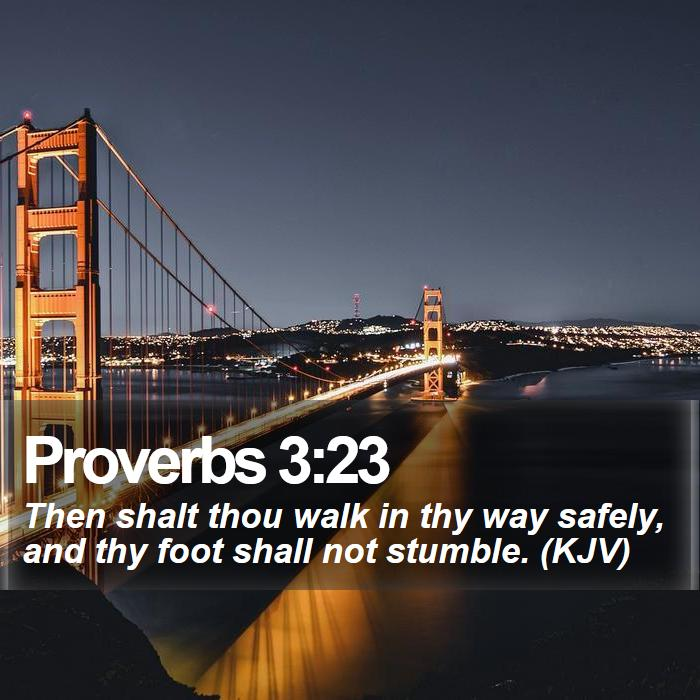 Proverbs 3:23 - Then shalt thou walk in thy way safely, and thy foot shall not stumble. (KJV)