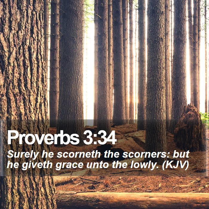 Proverbs 3:34 - Surely he scorneth the scorners: but he giveth grace unto the lowly. (KJV)