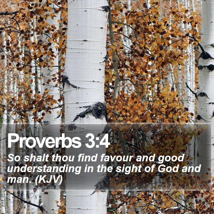 Proverbs 3:4 - So shalt thou find favour and good understanding in the sight of God and man. (KJV)