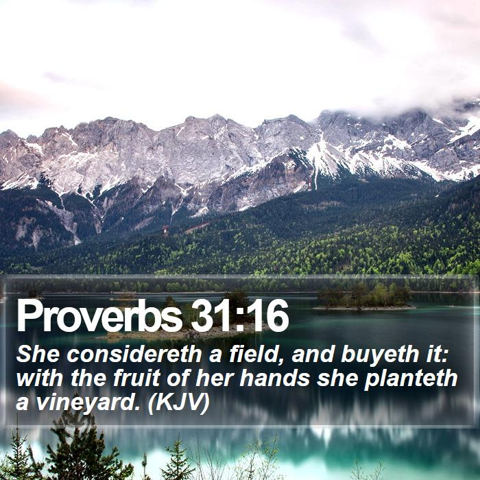 Proverbs 31:16 - She considereth a field, and buyeth it: with the fruit of her hands she planteth a vineyard. (KJV)
