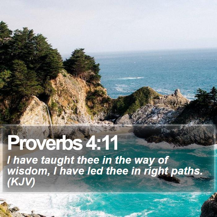 Proverbs 4:11 - I have taught thee in the way of wisdom, I have led thee in right paths. (KJV)