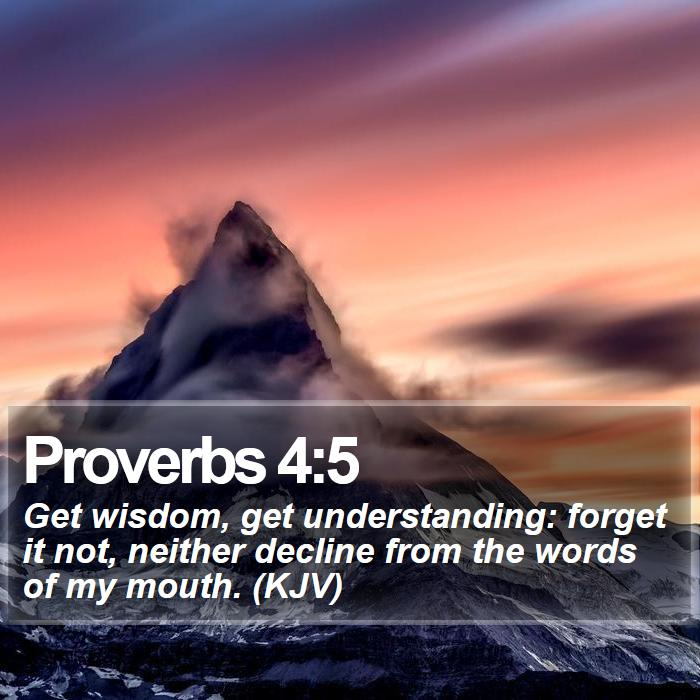 Proverbs 4:5 - Get wisdom, get understanding: forget it not, neither decline from the words of my mouth. (KJV)