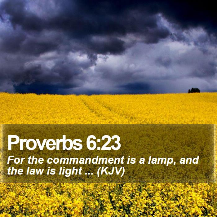Proverbs 6:23 - For the commandment is a lamp, and the law is light ... (KJV)