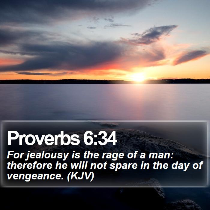 Proverbs 6:34 - For jealousy is the rage of a man: therefore he will not spare in the day of vengeance. (KJV)