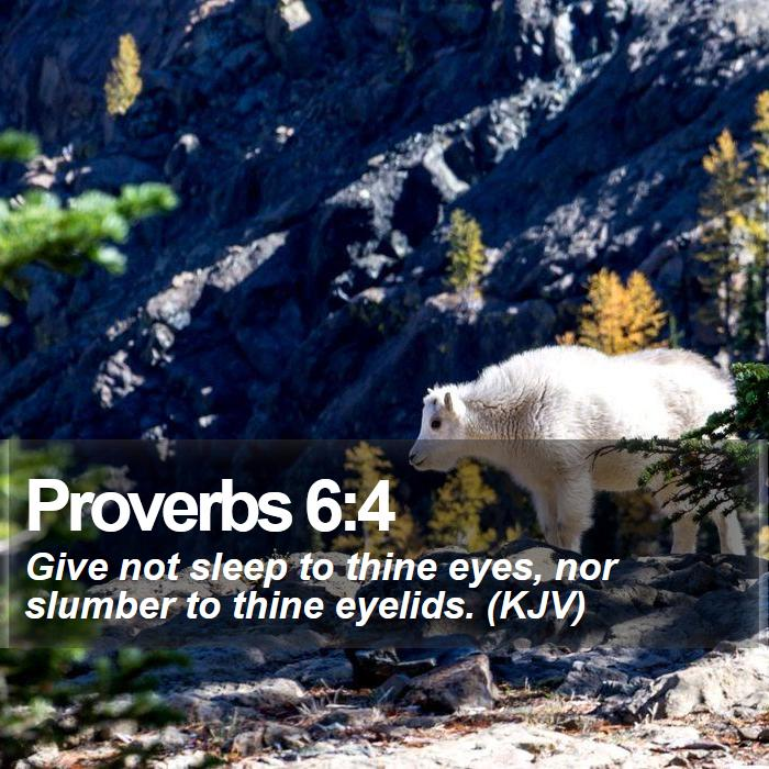 Proverbs 6:4 - Give not sleep to thine eyes, nor slumber to thine eyelids. (KJV)