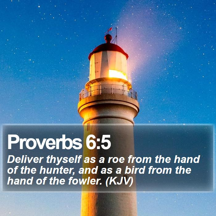 Proverbs 6:5 - Deliver thyself as a roe from the hand of the hunter, and as a bird from the hand of the fowler. (KJV)
