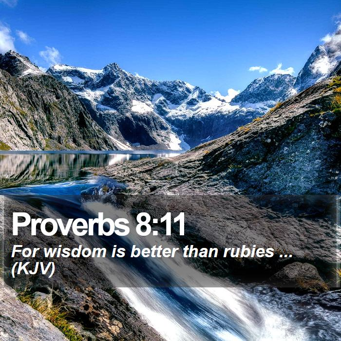 Proverbs 8:11 - For wisdom is better than rubies ... (KJV)