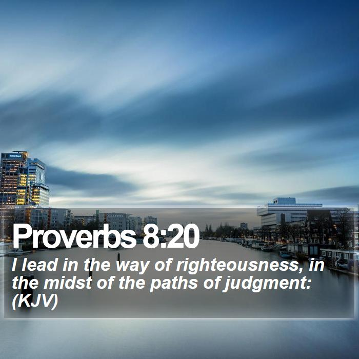Proverbs 8:20 - I lead in the way of righteousness, in the midst of the paths of judgment: (KJV)