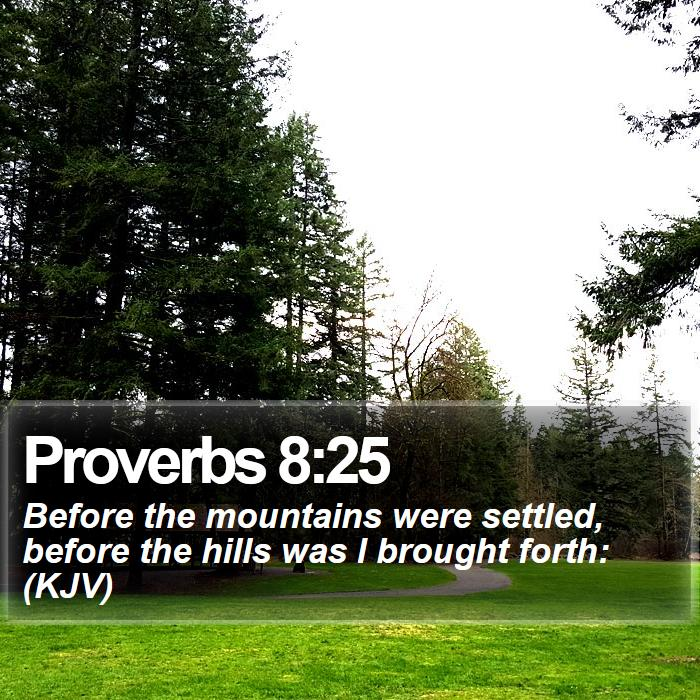 Proverbs 8:25 - Before the mountains were settled, before the hills was I brought forth: (KJV)