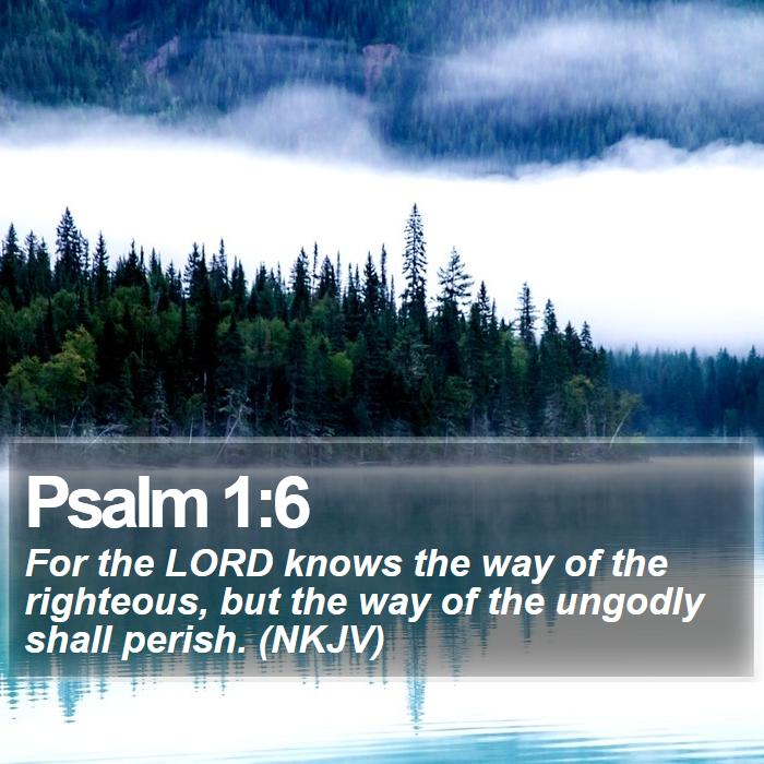 Psalm 1:6 - For the LORD knows the way of the righteous, but the way of the ungodly shall perish. (NKJV)