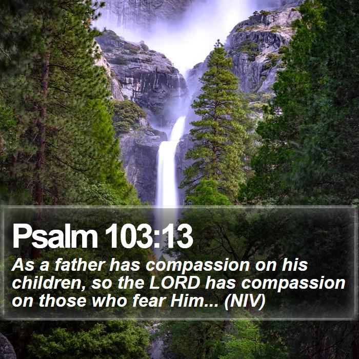 Psalm 103:13 - As a father has compassion on his children, so the LORD has compassion on those who fear Him... (NIV)