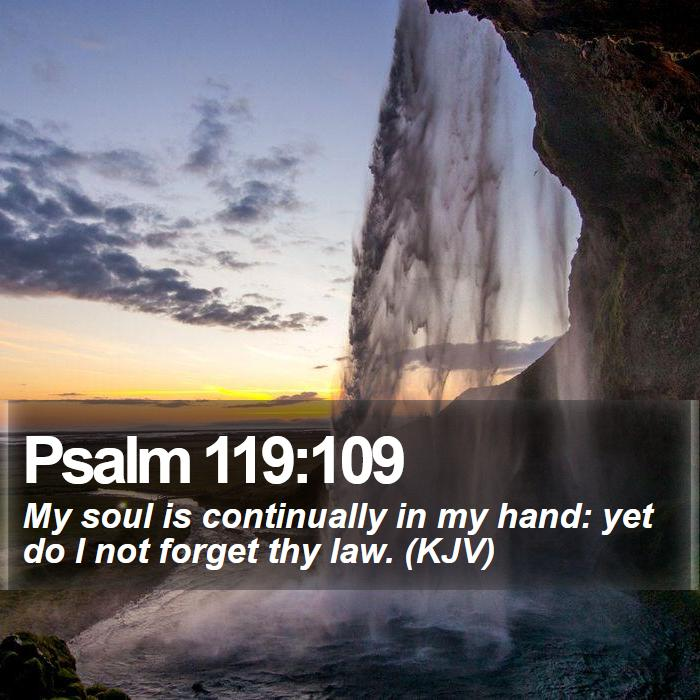 Psalm 119:109 - My soul is continually in my hand: yet do I not forget thy law. (KJV)