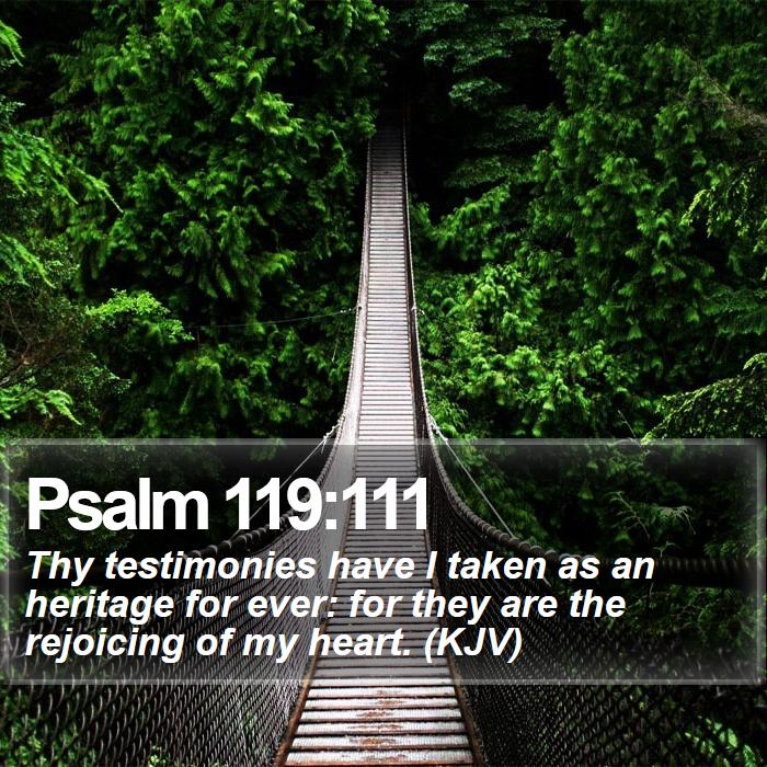 Psalm 119:111 - Thy testimonies have I taken as an heritage for ever: for they are the rejoicing of my heart. (KJV)