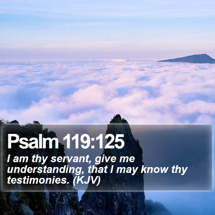 Psalm 119:125 - I am thy servant, give me understanding, that I may know thy testimonies. (KJV)